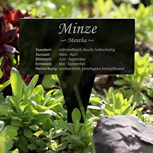 Vetro acrilico erbe lavagna rettangolare nero da parete for Nomi di piante da giardino